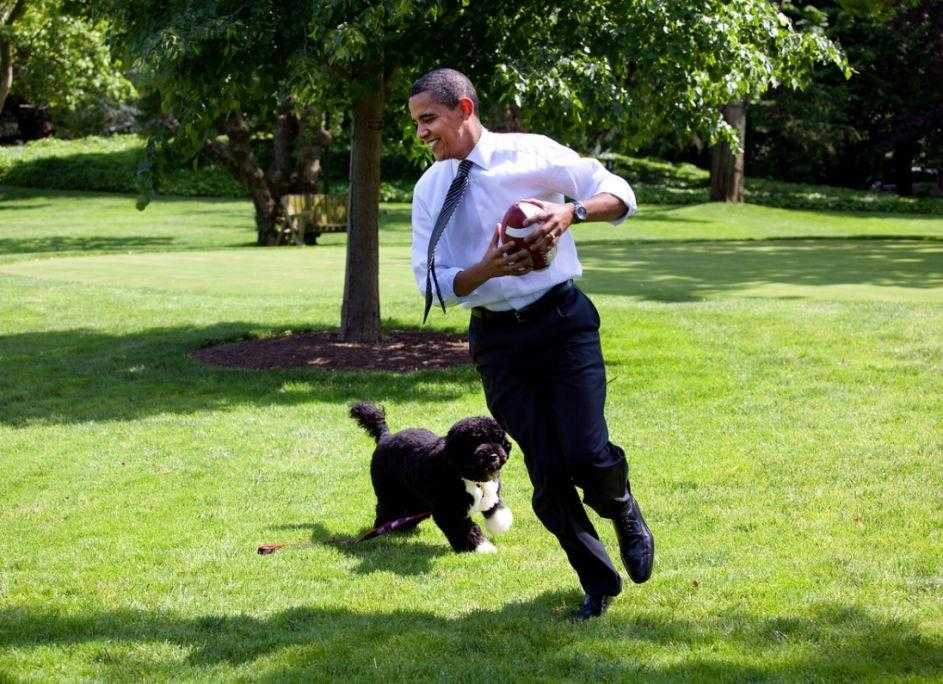 Barack Obama playing with his pet
