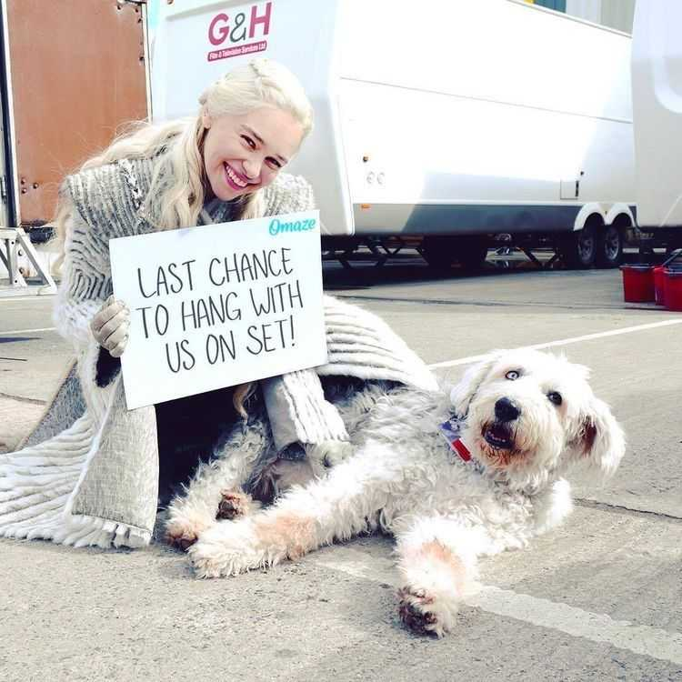 Emilia Clarke's puppy