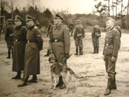 SS Officers with Shepherd dog