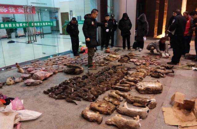 China_Outbreak_Wildlife_Trade