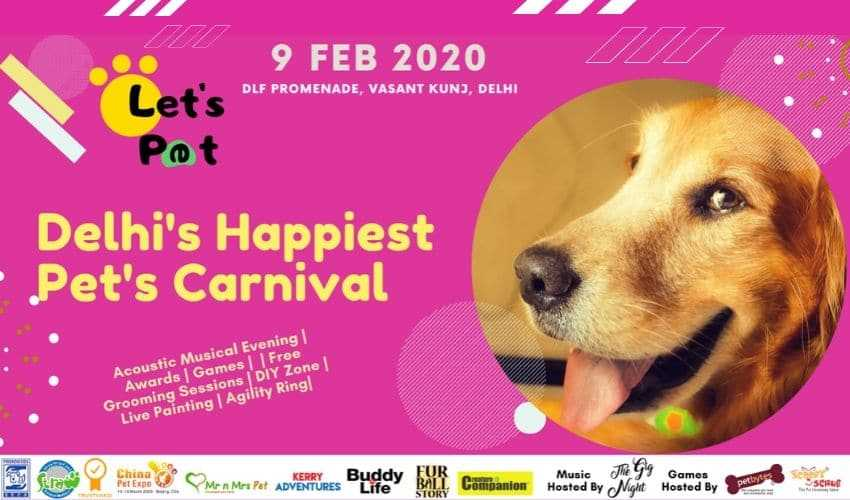 Let's Pet Carnival 2020