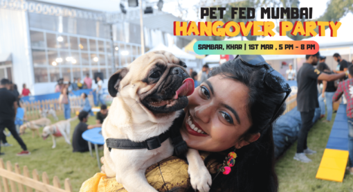 Pet Fed Hangover Party at Mumbai