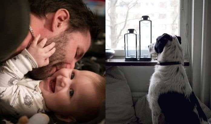 The 3 Surprising Reasons Humans Will Adopt Dogs Instead Of Having Kids in Future