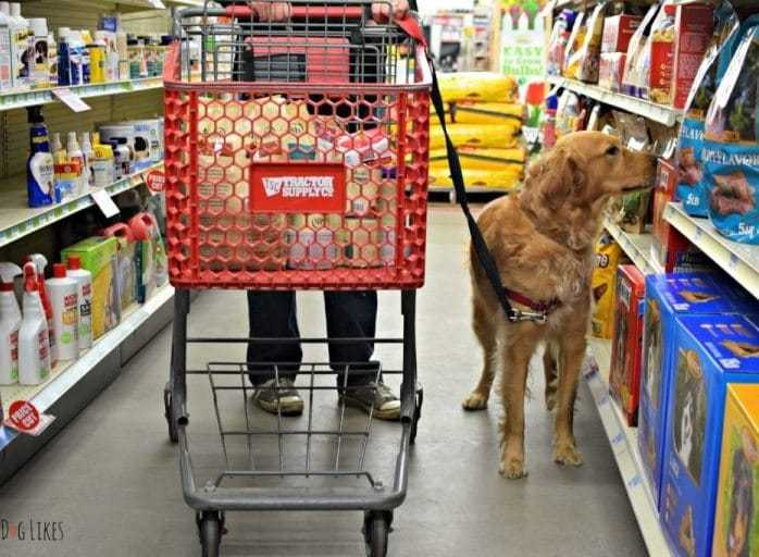 Dog Supply