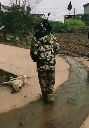 Chinese Official Killing a Dog