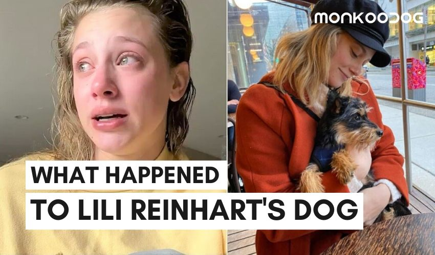 Riverdale Star Lili Reinhart's Dog