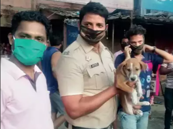 Dog Stuck Between Narrow Building Gap Save by Mumbai Police