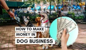 how to make money in dog business