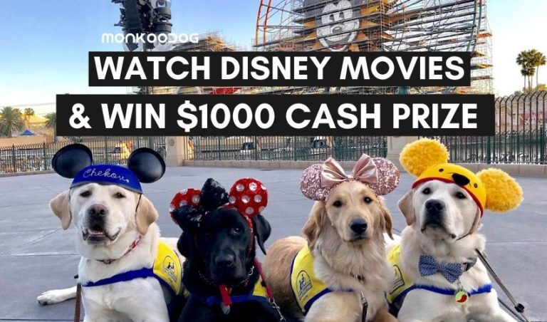 BINGE-WATCH DISNEY DOG MOVIES AND GET PAID $1,000 BY THIS CBD OIL COMPANY!