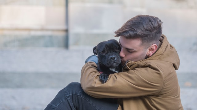 A boy is hugging and kissing a black Pitbull puppy in his arms