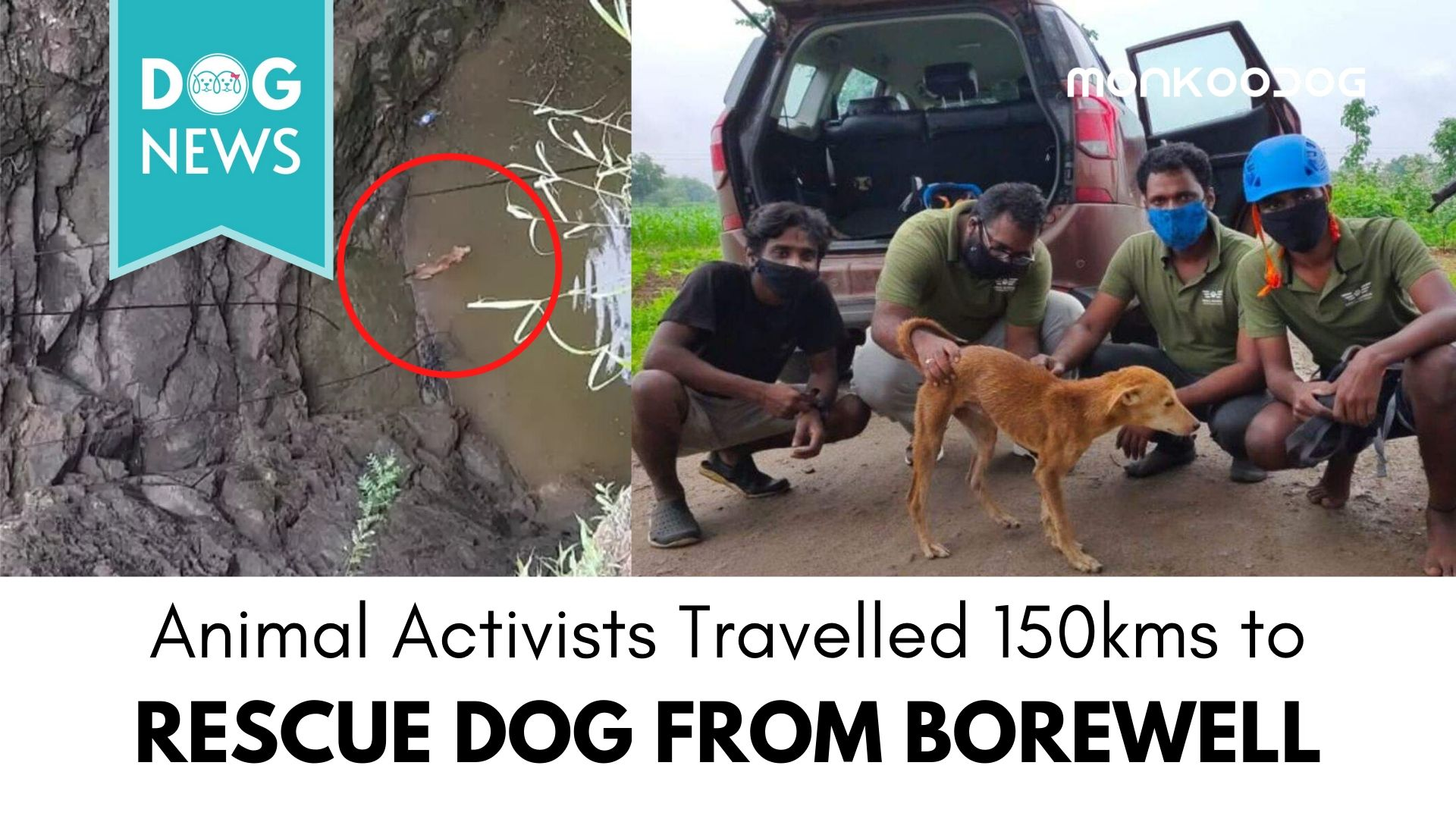 Animal Rescue Activists travel 150 km amidst the pandemic to rescue dog from 70 ft borewell
