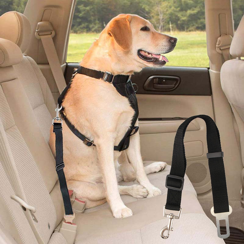 Adjustable car seat belt harness for dogs.