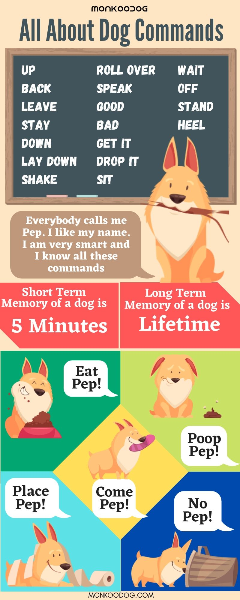 Train Dog commands