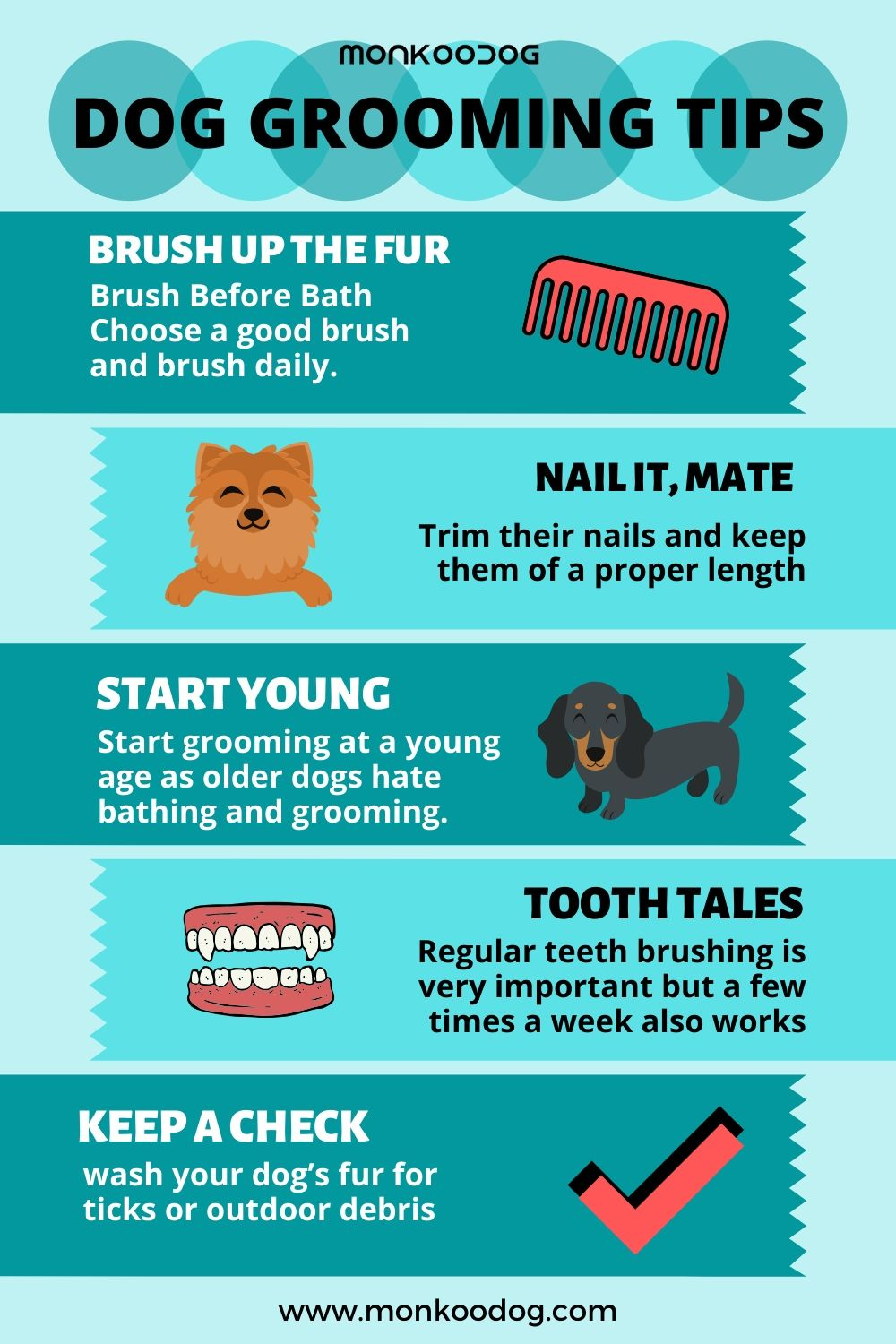 HOW YOU CAN GROOM YOUR DOG AT HOME?