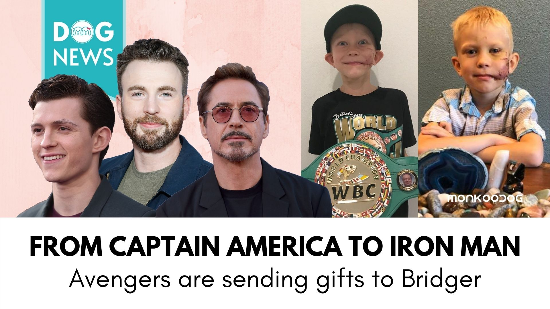 From Captain America to Iron Man, Reel Superheroes Praise 6 years old Boy After Saving his Sister's life from a Dog