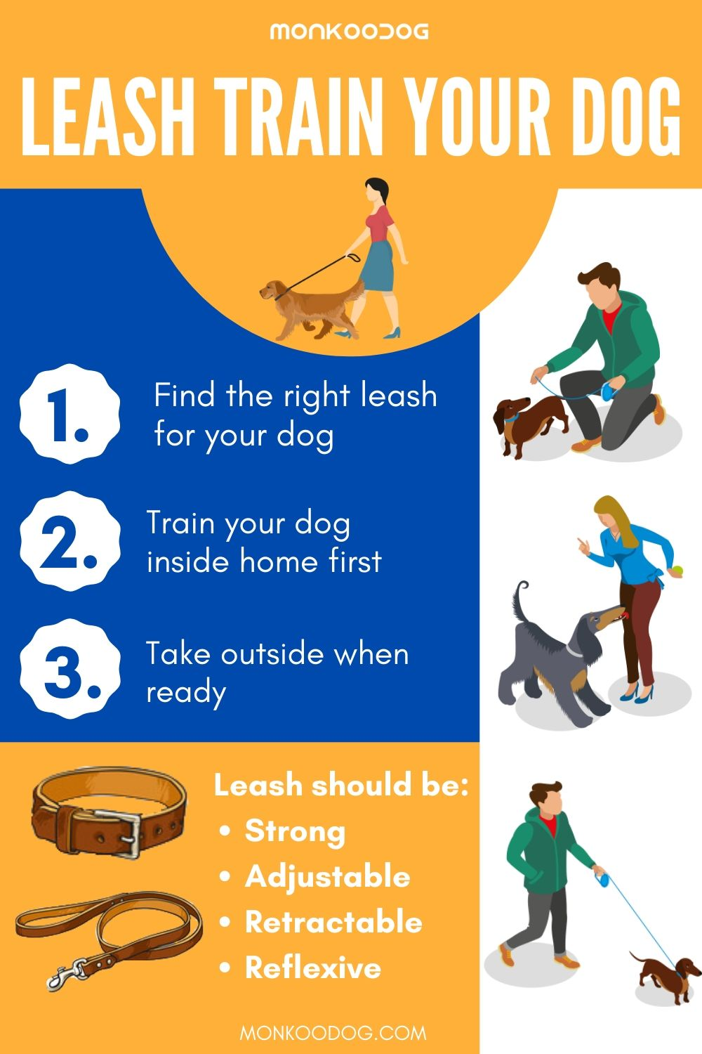 EASY STEPS TO LEASH TRAIN YOUR DOG