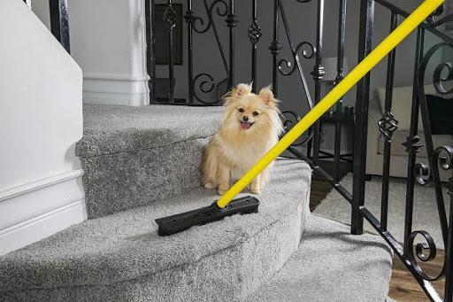 Multipurpose Broom For Pet Owners