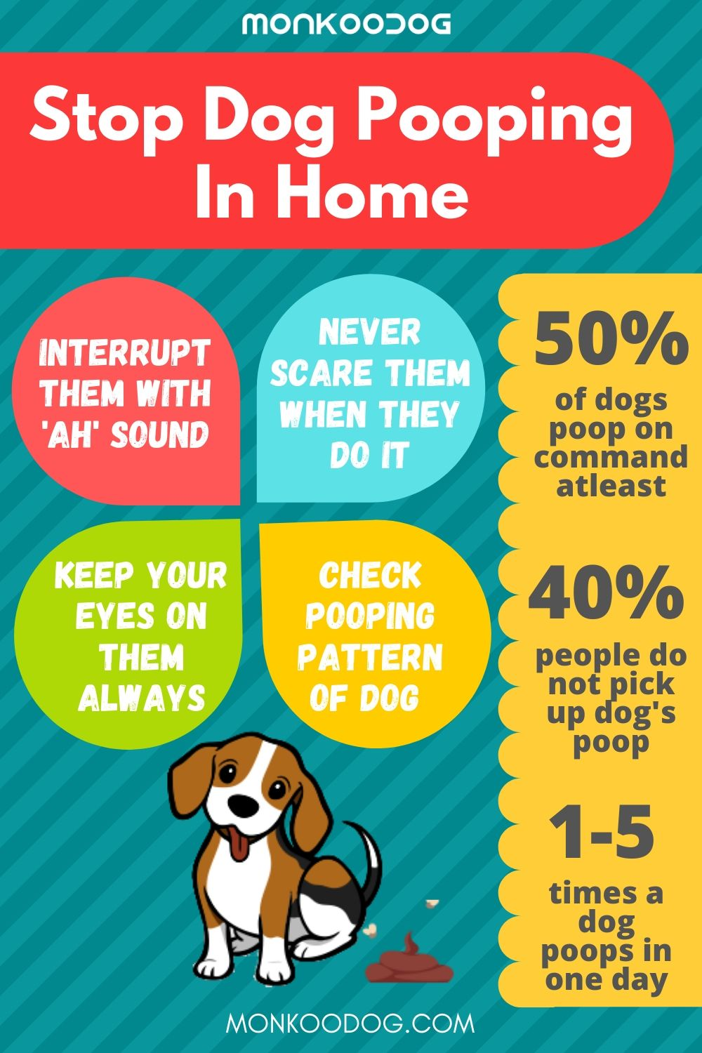 Stop Dog Pooping In Home