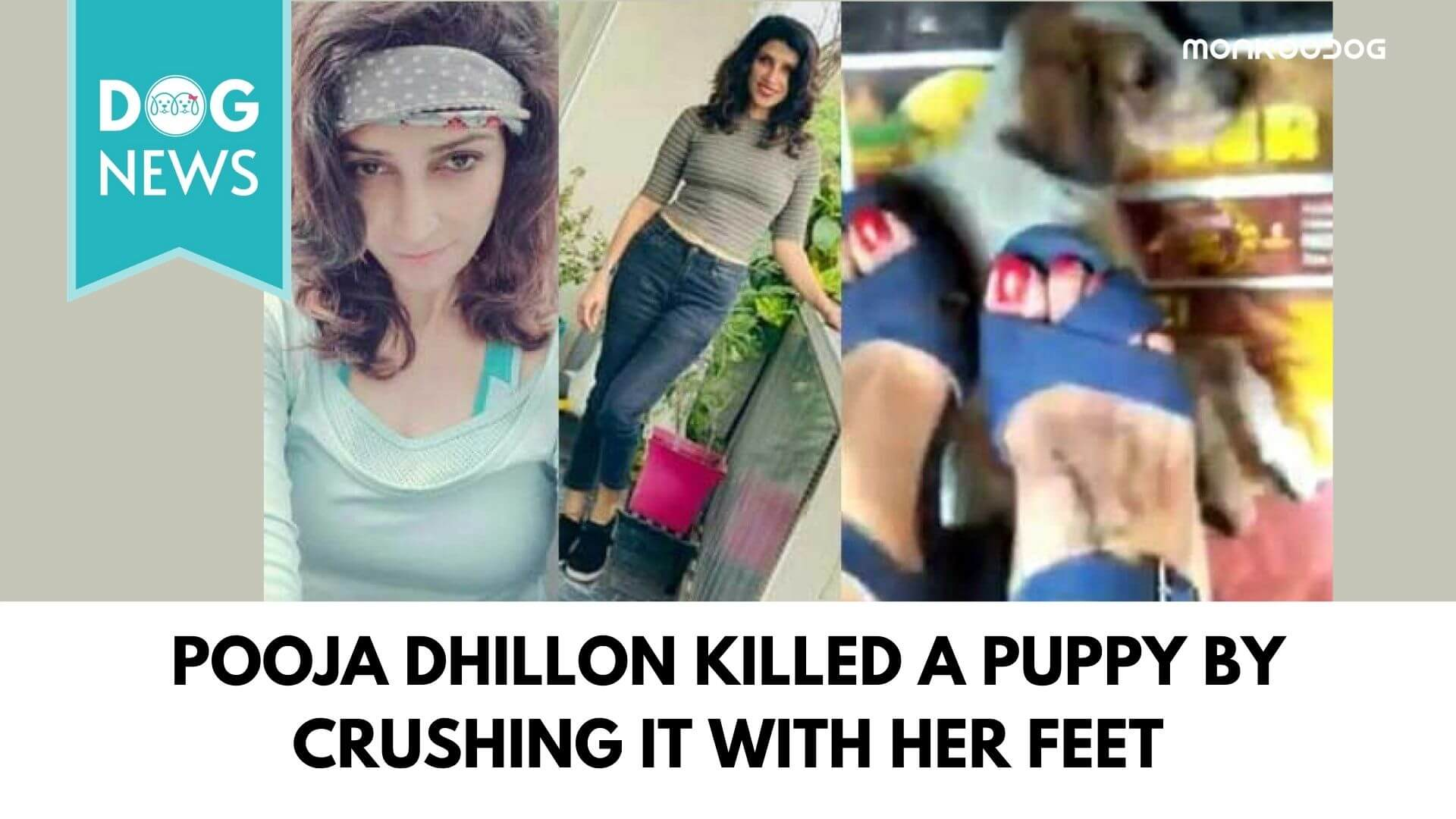 A Woman stomped and killed innocent puppies in her car, revealed the psychopathic ugliness behind a beautiful face.