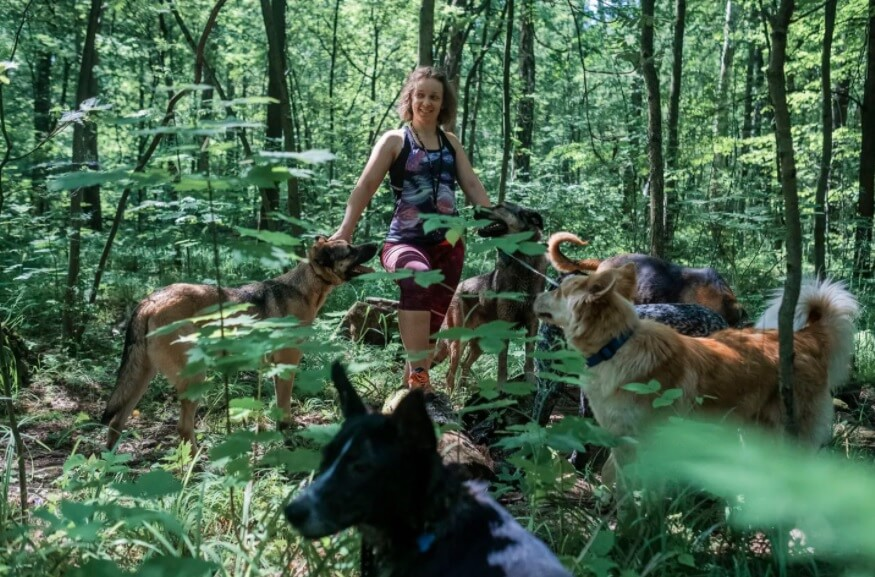 Anastasia Pomorina walks with her dogs in Moscow
