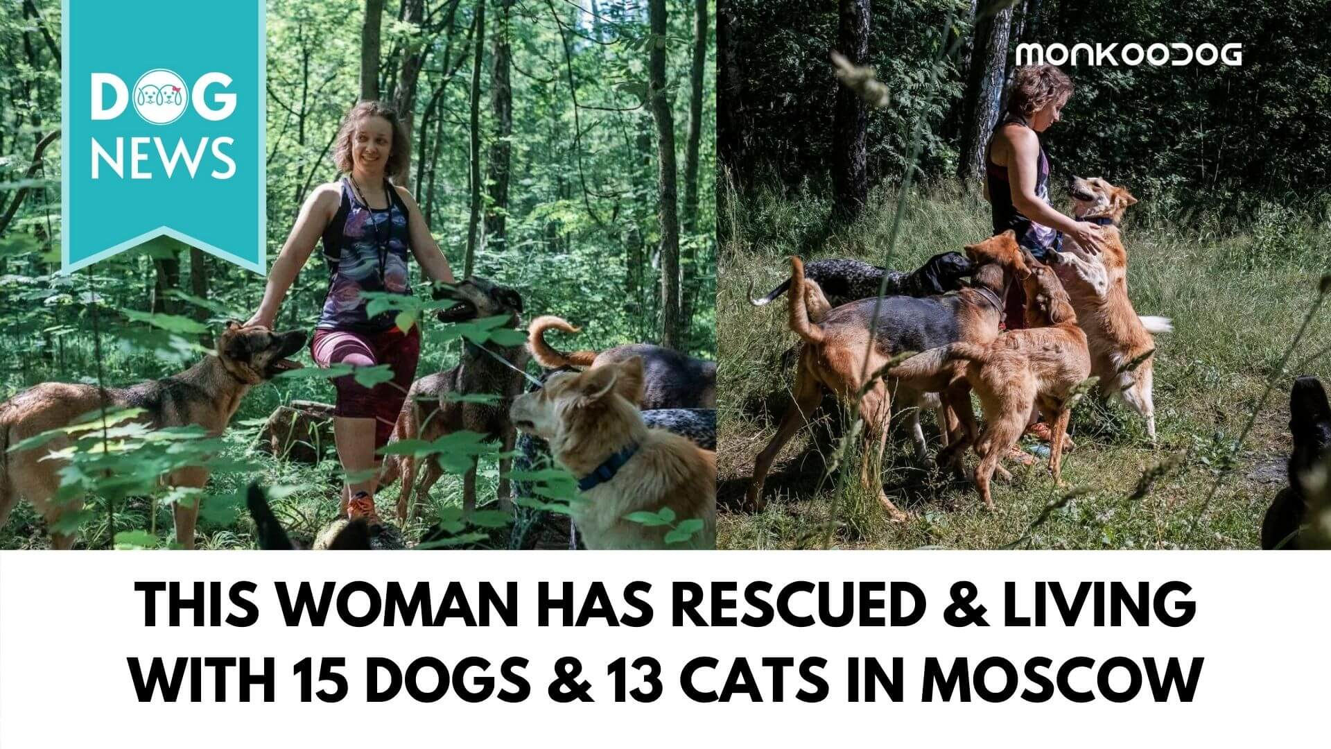 Anastasia Pomorino - The story of a woman who dedicated her entire life to saving the lives of strays of Moscow
