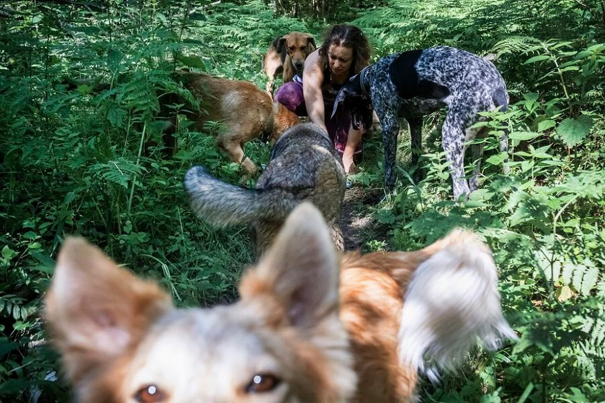 Anastasia kneels by her dogs while on a walk outside Moscow