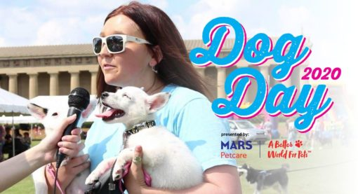 Dog Day Festival 2020, a Dog event presented by Mars Petcare on 12 September 2020