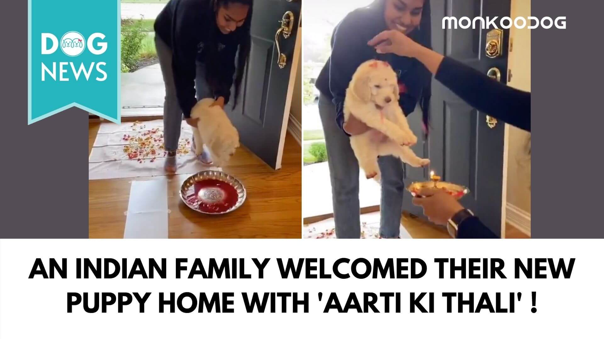 An Indian family welcoming a new puppy home in desi style is the most adorable style.