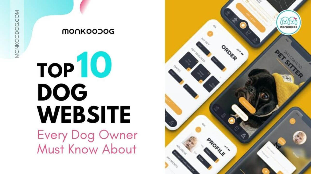 Top 10 Websites Every Dog Owner Must Know
