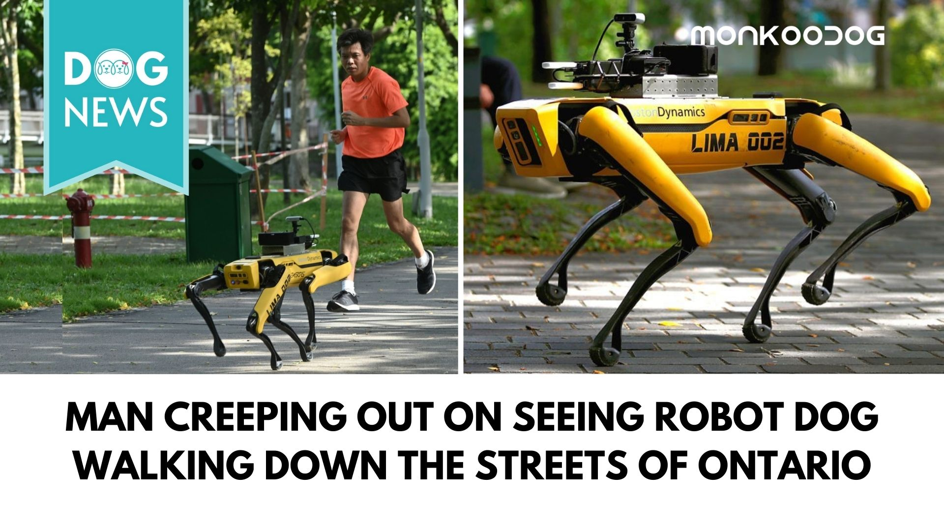 Video of a man creeping out on seeing robot Dog walking down the streets of Ontario goes viral