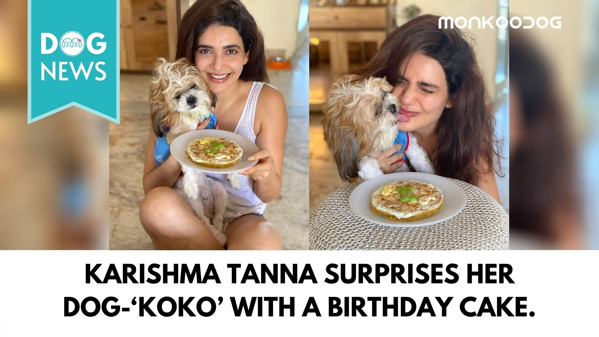 Karishma Tanna surprises her cute little dog-'koko' with a yummy cake on his birthday.
