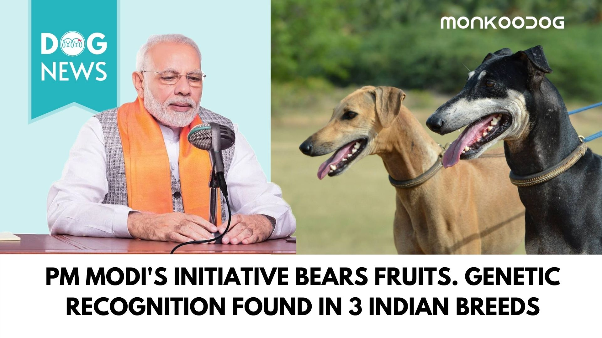 Pm Modi's initiative bears fruits. GENETIC RECOGNITION found in 3 indian breeds