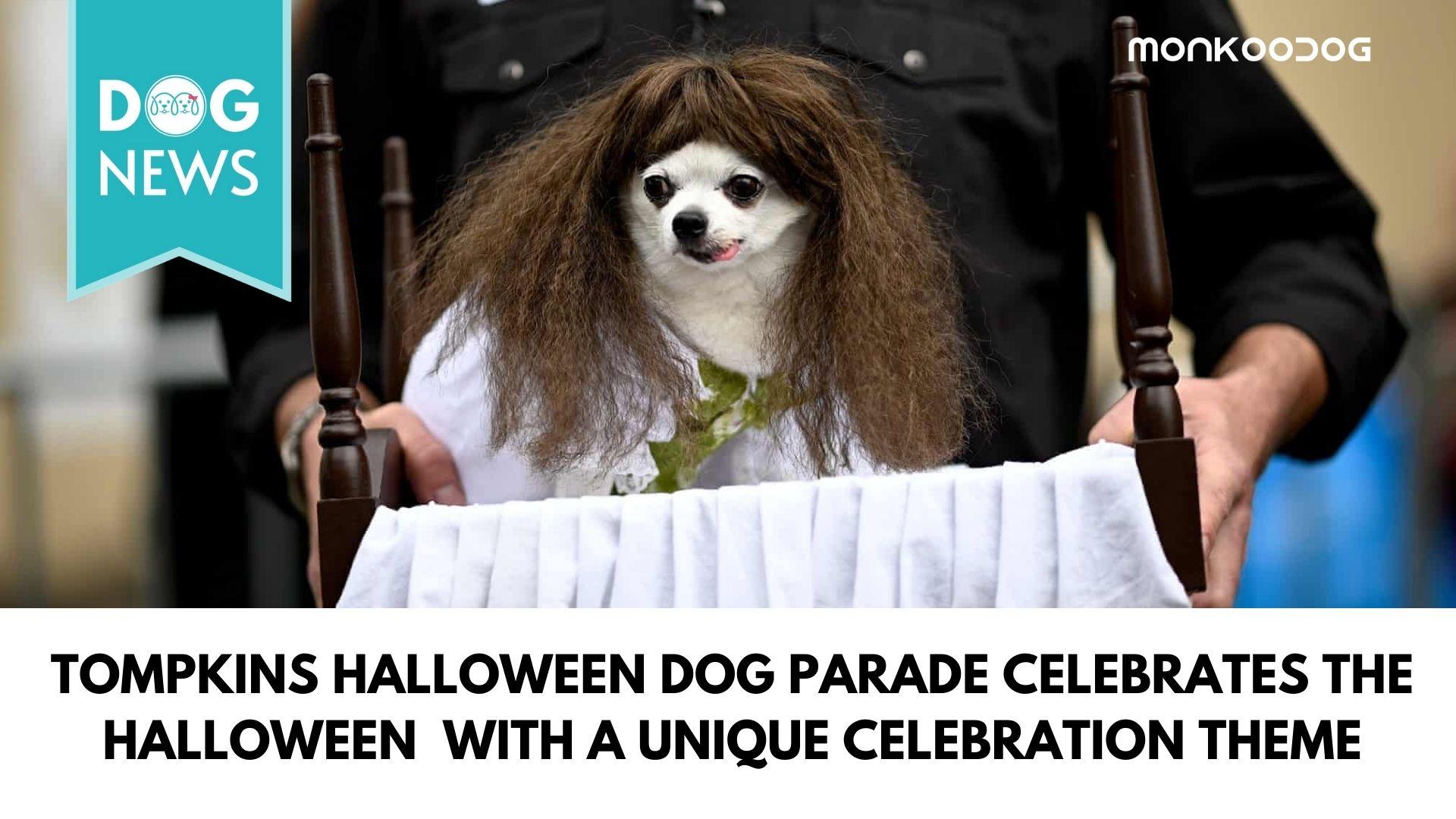 Tompkins Halloween Dog Parade 2020 becomes a global viral sensation with a unique celebration theme
