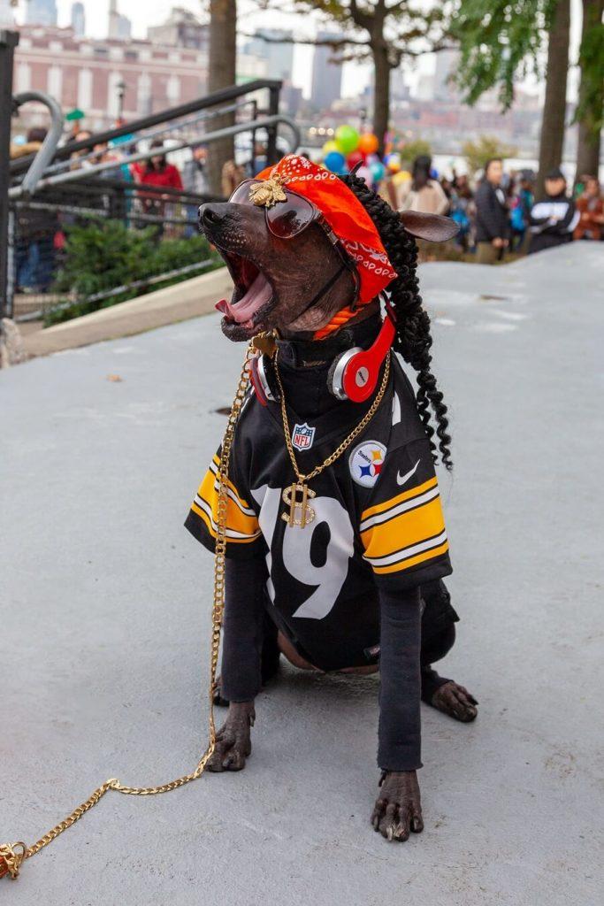 Tompkins Halloween Dog Parade