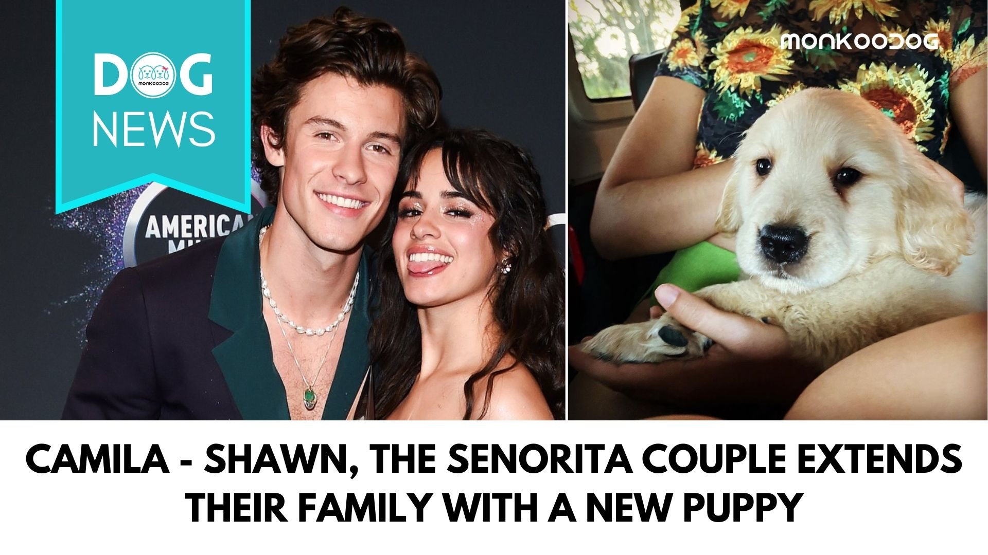 Camila - Shawn, the Senorita Couple extends their family with a new puppy