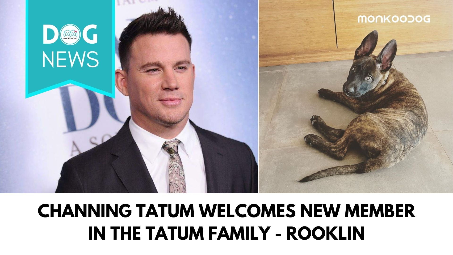 Channing Tatum Welcomes New Member In The Tatum Family While Shooting His New Movie - 'Dog'.