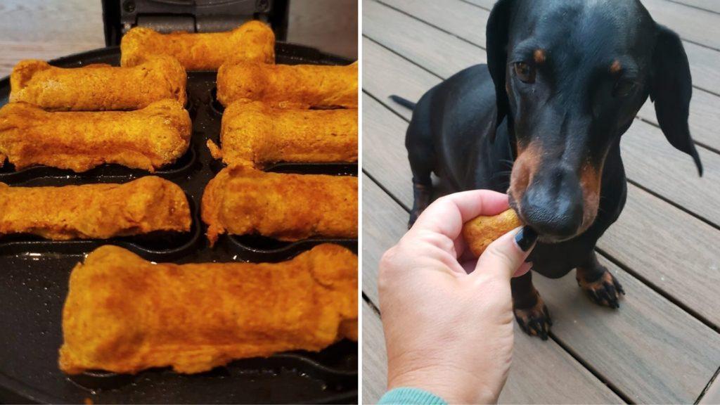 Dash Express Dog Treat Maker that bakes homemade treats in just 5 minutesDash Express Dog Treat Maker that bakes homemade treats in just 5 minutes (2)