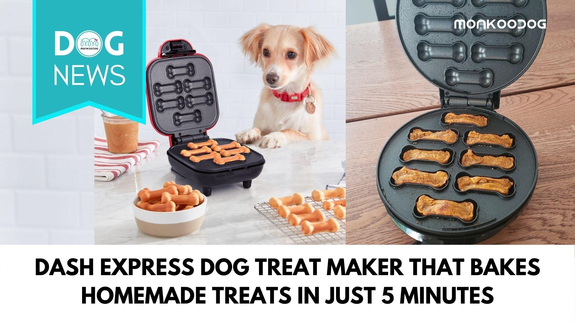 Dash Express Dog Treat Maker that bakes homemade treats in just 5 minutesDash Express Dog Treat Maker that bakes homemade treats in just 5 minutes