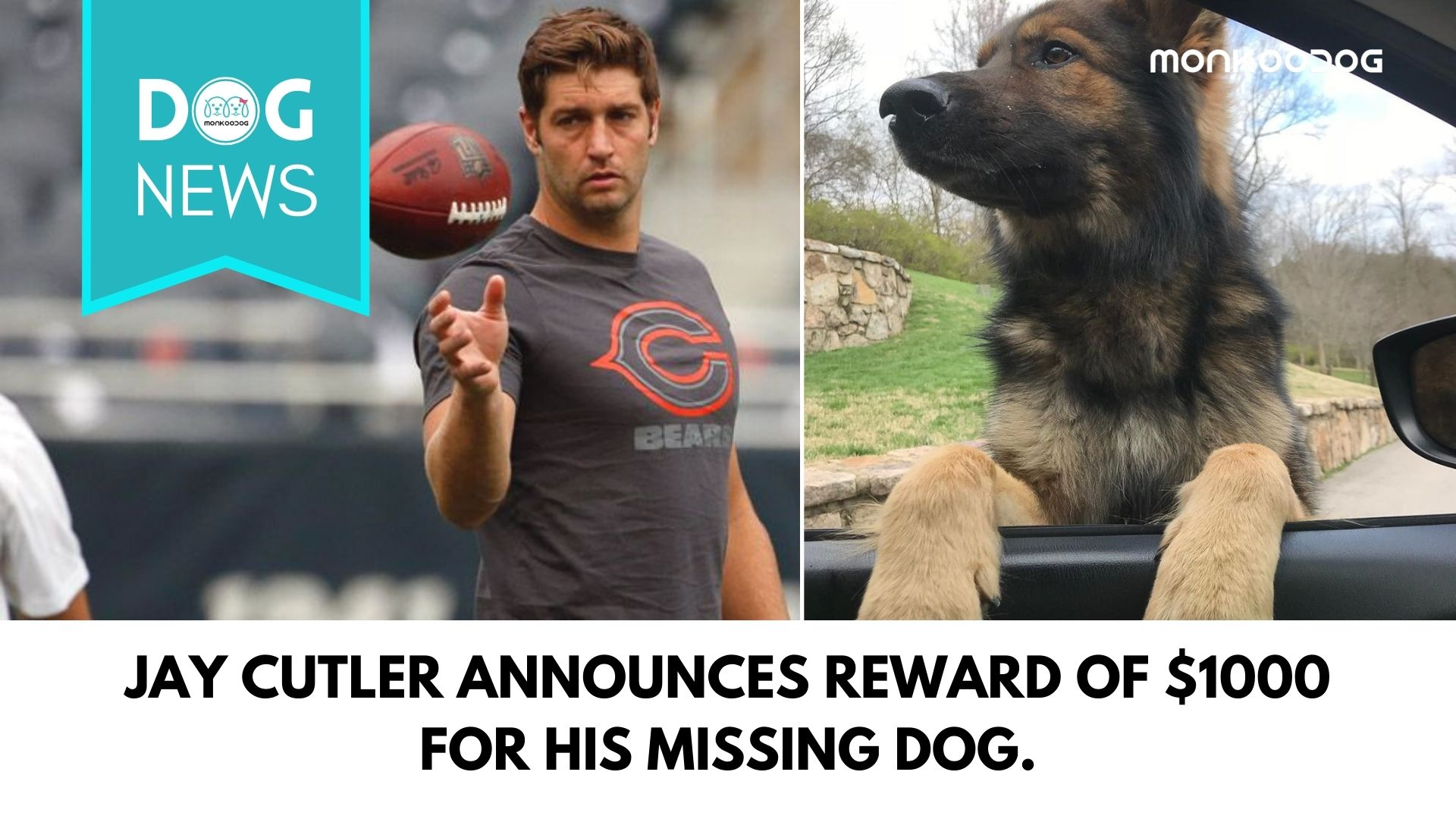 Jay Cutler Announces Reward of $1000 For His Missing Dog.
