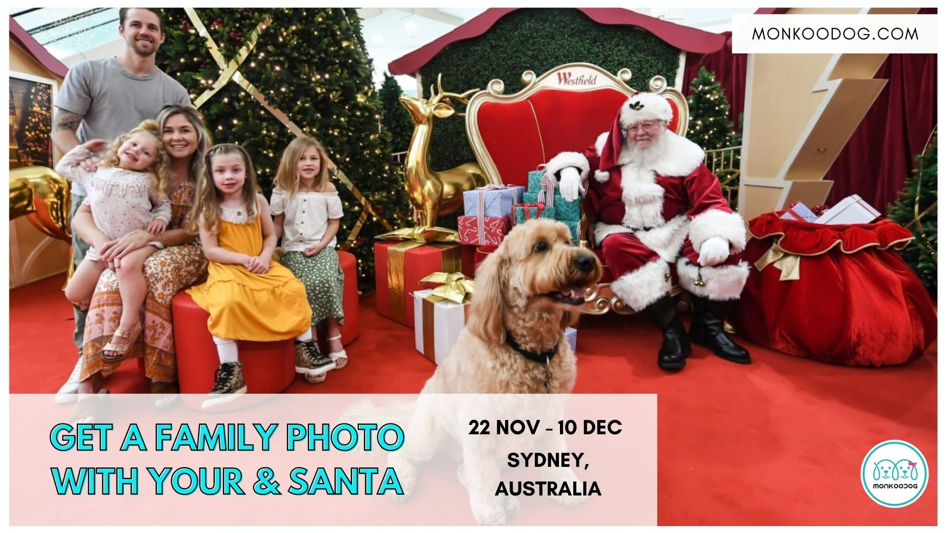 Pet Photography_ Get Santa photos with your dog & whole family.
