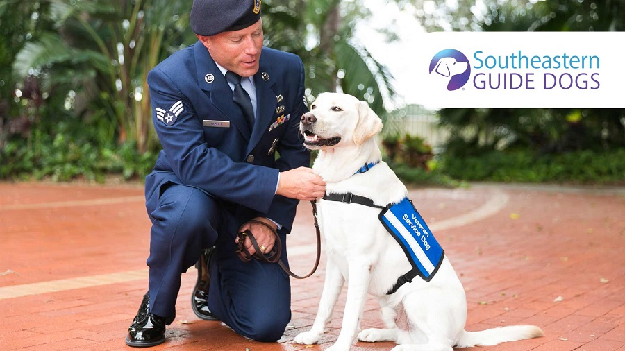 Southeastern Guide Dogs 2