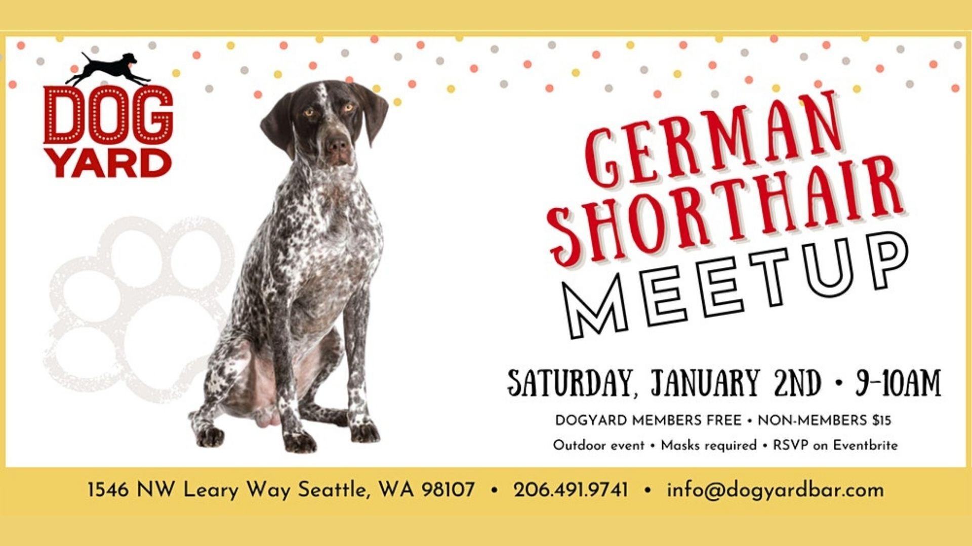 German Shorthair Meetup at the Dog Yard Sat Jan 2, 2021
