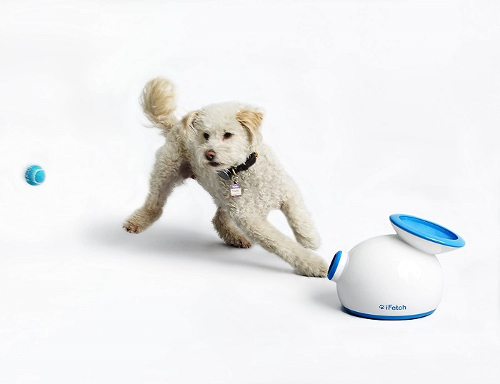 Interactive Ball Launchers by iFetch