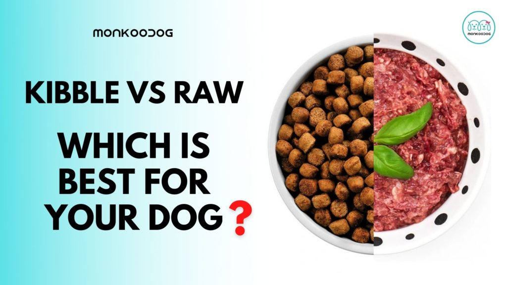 Kibble vs raw - Which is Best for Your Dog