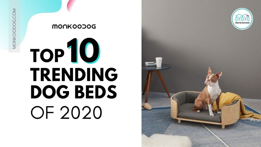 Top 10 Trending Dog Beds that you can buy online in 2020