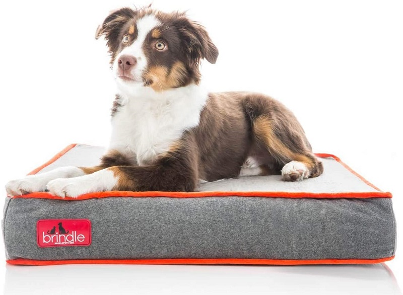 Waterproof Memory Foam Pet Bed