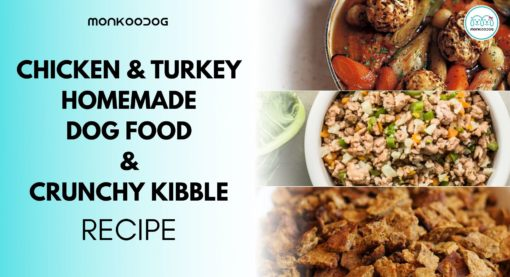 How to make Dog Food at Home – Easy Diy Chicken & turkey homemade dog food recipe & crunchy kibble dog food recipe