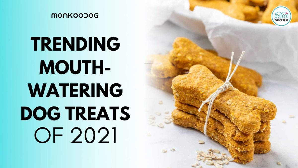 Best Mouth-watering Dog Treats Available Online