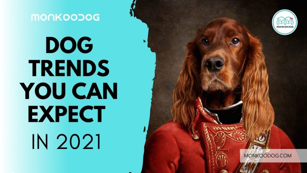 Dog Trends You Can Expect in 2021