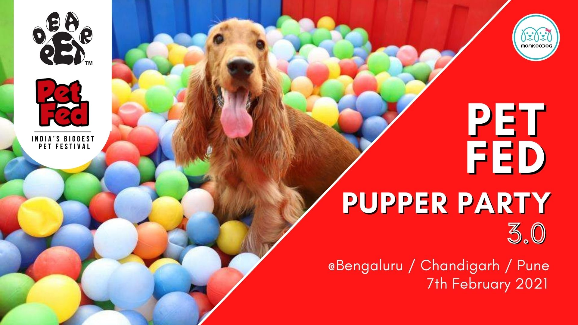 PetFed Pupper Party - Dog event